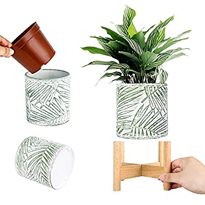 Flower Planter Pot Container Desk Planter Stand Planter Office Decorative Flower Pot Indoor Geometric Planter with Stand, Flower Plant No Included (Dia 14 cm, Green Leaven) : Garden & Outdoor