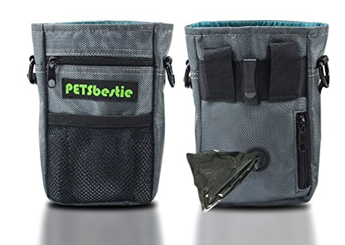 PETSbestie Waterproof Dog Treat Pouch for Training – Dog Pouch with Adjustable Waist Belt or Shoulder Strap – Waste Bags Dispenser – Carries Treats, Toys (Grey Color)