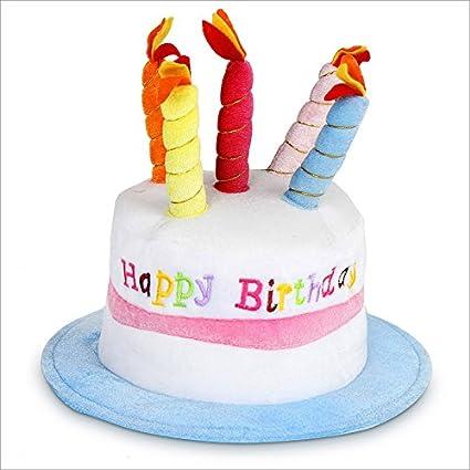Gorro de cumpleaños de Felpa - ¡Happy Birthday!: Amazon.es ...