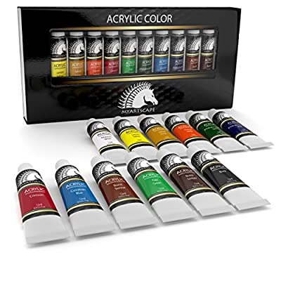 Acrylic Paint Set - Artist Quality Paints for Painting Canvas, Wood, Clay, Fabric, Nail Art, Ceramic & Crafts - 12 x 12ml Vibrant Heavy Body Colors - Rich Pigments - Professional Supplies by MyArtscape ...
