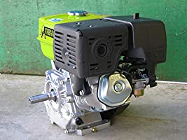 Motor térmico gasolina 9,6kW 13 pS 389cc: Amazon.es: Bricolaje y ...