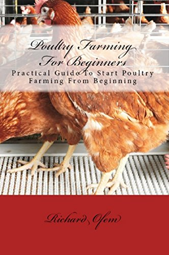 Poultry Farming for Beginners: Basic guide to start poultry farming business - Poultry Base