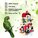 RYPET Bird Chewing Toy - Parrot Cage Bite Toys