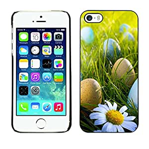Hot Style Cell Phone PC Hard Case Cover // M00103067 hunt egg photos easter // Apple iPhone 5 5S