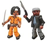 Diamond Select Toys The Walking Dead: Minimates Series 5: Michonne and Tyreese Two-Pack Action Figure