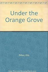 Under the Orange Grove
