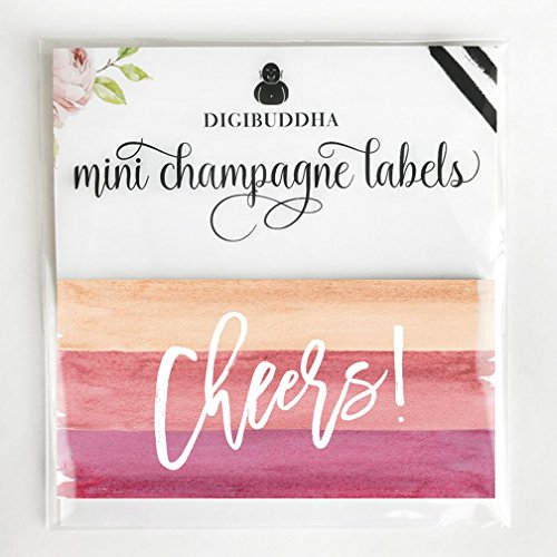 """All Occasion Mini Champagne & Wine Bottle Decals, Set of 20 Cheers! Pink Labels Celebrate Graduate, Quinceañera, Wedding Reception, Anniversary, New Home, Retirement, 3.5"""" x 1.75"""" Multi-Use Sticker"""