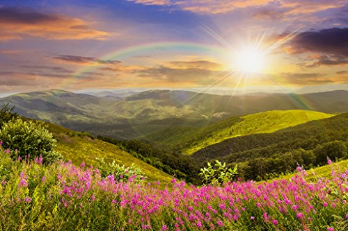 Startonight Canvas Wall Art Daydream Sun, Rainbow and Beautiful Nature, Nature USA Design for Home Decor, Dual View Surprise Wall Art 31.5 X 47.2 Inch Original Art Painting! by Startonight