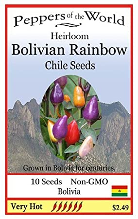 Bolivian Rainbow Heirloom - 10 Seeds - Ornamental Hot Pepper - Beautiful Plant
