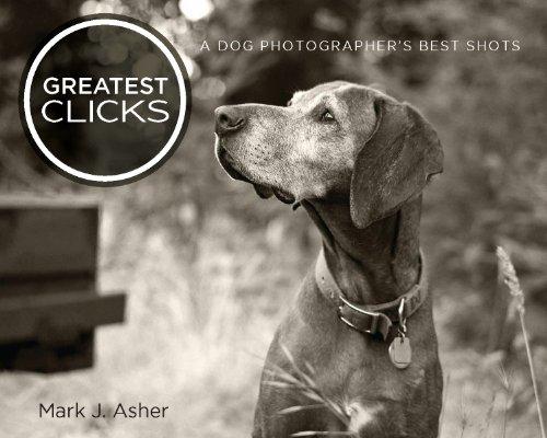 (Greatest Clicks: A Dog Photographer's Best Shots)