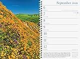 Audubon Engagement Calendar 2021