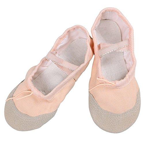 BAOHULU Girls Ballet Dance Ballerina Short Sleeve Tutu Skirted Leotard (2M US Little Kid, Apricot ()