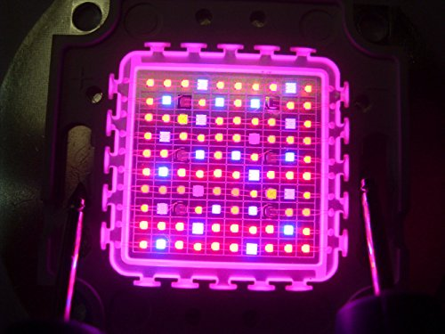 7 Band Led Grow Light in US - 6
