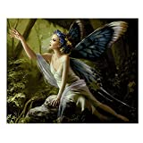 fairy paint by number - SODIAL(R) 16X20inch Paint By Number Kit DIY Digital Oil Acrylic Painting on Canvas Home Decor, butterfly fairy