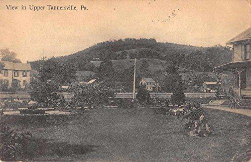 Tannersville Pennsylvania birds eye view of area antique pc - Pennsylvania Tannersville