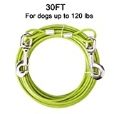 EXPAWLORER 30ft Dog Tie Out Cable with Swivel Clip Tangle Free for Dog Up to 120 lbs, Outdoor, Yard and Camping