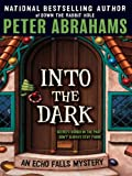 Into the Dark by Peter Abrahams front cover