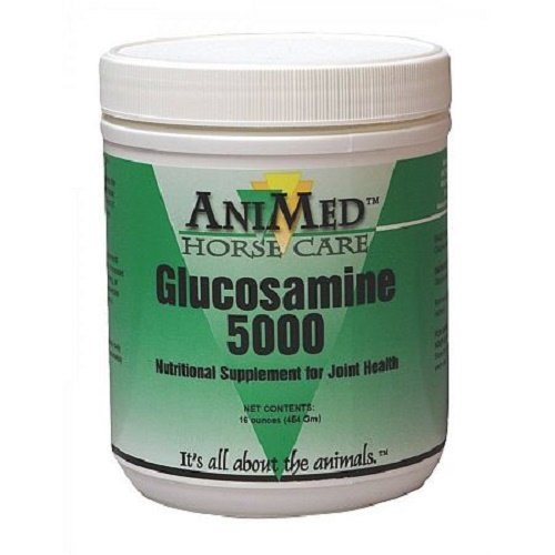 ANIMED 1 lb Glucosamine 5000 Equine Supplement Helps Maintain Healthy Cartilage and Joint Function and - Equine Supplements