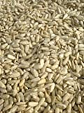 10kg SACK SUNFLOWER HEARTS - Bird Food