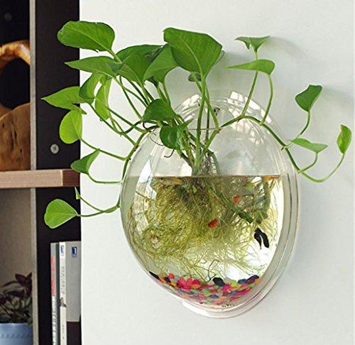 Sweetsea Creative Acrylic Hanging Wall Mount 1 Gallon Fish Tank Bowl Vase Aquarium Plant Pot Fish Bubble Aquarium Decor - Clear (Large) by Sweetsea