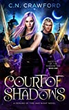 Court of Shadows (Institute of the Shadow Fae)