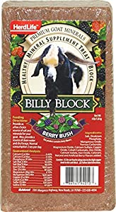 Evolved Habitats 94010 Billy Goat Mineral Supplement Treat Block - Berry Bush - 4 lbs.