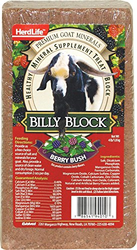 (Evolved Habitats 94010 Billy Goat Mineral Supplement Treat Block - Berry Bush - 4 lbs.)
