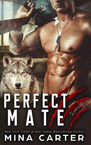 Perfect Mate (Project Rebellion)