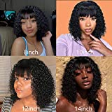 Nvnvdij 12 Inch Brazilian Short Curly Bob Wigs With Bangs Glueless None Lace Front Full Machine Made Wigs 150% Density Virgin Human Hair For Black Women