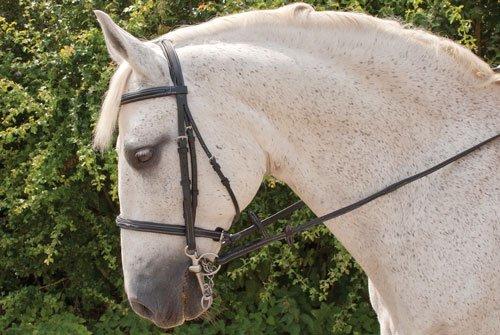 Havanah Full Havanah Full Rhinegold 'Elegance' Cavesson Style Horses Bridle