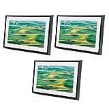 Meural 3x Canvas - Leonora Black
