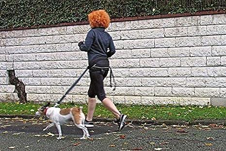 cat-or-dog.boutique Canicross Sport - Cinturón de Manos Libres ...