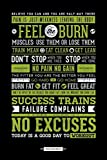 Posters: Motivational Poster - Fitness, Feel The Burn, You Ca Do It
