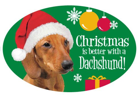 - Christmas is Better with A Dachshund