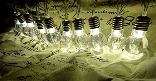 10 Bulb String Lights - 5