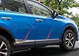 Salusy 4pcs Car Body Side Door Protector Molding Trim For...