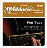 D\'Addario EFT13 Flat Tops Phosphor Bronze Acoustic Guitar Strings, Resophonic Guitar, 16-56