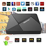 [2016 Newest] DOLAMEE D5 Android TV Box 1GB /8GB Rockchip RK3229 Quad-core 2.4G Wifi 32bit Android 5.1 with 1000M LAN XBMC Kodi 16.1 Fully Loaded 4K Streaming Media Player