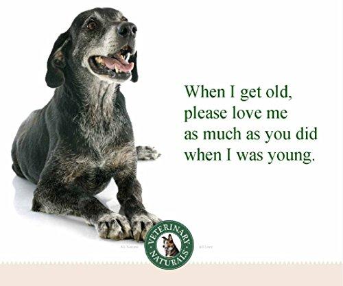 Veterinary Naturals Probiotic fluffy Digestive Remedies