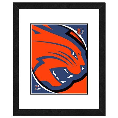 NBA Charlotte Bobcats Team Logo Double Matted & Framed Photo, 18