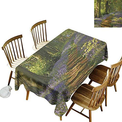 kangkaishi Iron-Free Anti-fouling Holiday Long Tablecloth Table decorationA