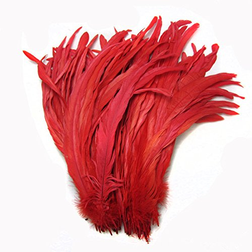 CENFRY Nature Rooster Coque Tails Feathers Costume Craft Decoration 12-14inch Pack of 50 (red)