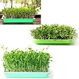 Yamix 150Pcs Seed Sprouter Vegetable Planting Paper
