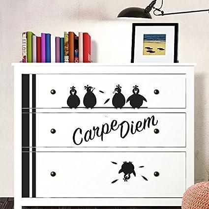 Pergrandora W5229 Adesivo Murale Carpe Diem Uccelli Adatto A Ikea