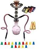 "Zebra Smoke Starter Series Pack: 18"" 2 Hose Hookah Combo Kit Set w/ Instant Charcoal (Like Three Kings Charcoal), Hydro Herbal Molasses(like Blue Mist), and Hookah Mouth Tips Smokes More Then Hookah Pen (Pink)"