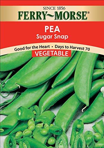 Ferry-Morse Sugar Snap Peas Seeds