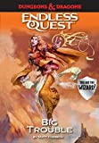 Book cover from Dungeons & Dragons: Big Trouble: An Endless Quest Book by Matt Forbeck