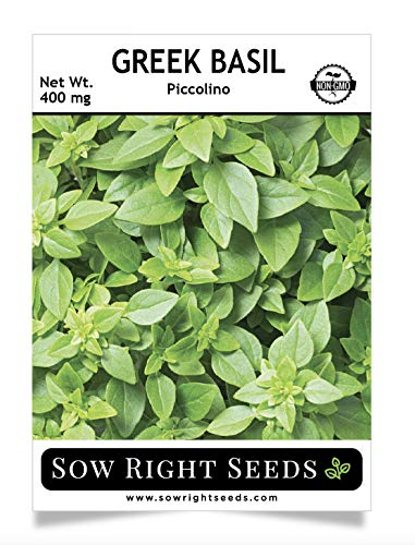 (Sow Right Seeds - Greek Basil Seed for Planting - 500 Non-GMO Heirloom Seeds - Full Instructions for Easy Planting and Growing a Kitchen Herb Garden, Indoors or Outdoor; Great Gardening Gift (1))