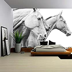 wall26 - Purebred Horses - Removable Wall Mural | Self-adhesive Large Wallpaper - 100x144 inches