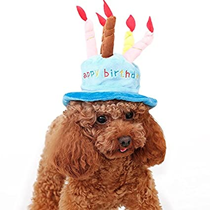 Happy Birthday Dog Hat Costume Small Halloween Party Blue